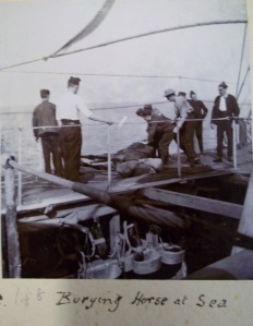 Burying a horse at sea