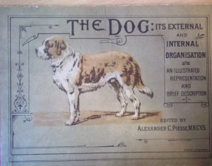Cover of The Dog: its external and internal organisation