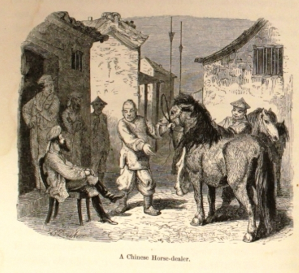 in the story the horse dealers The the horse-dealer's daughter community note includes chapter-by-chapter summary and analysis, character list, theme list, historical context, author biography and quizzes written by community members like you.